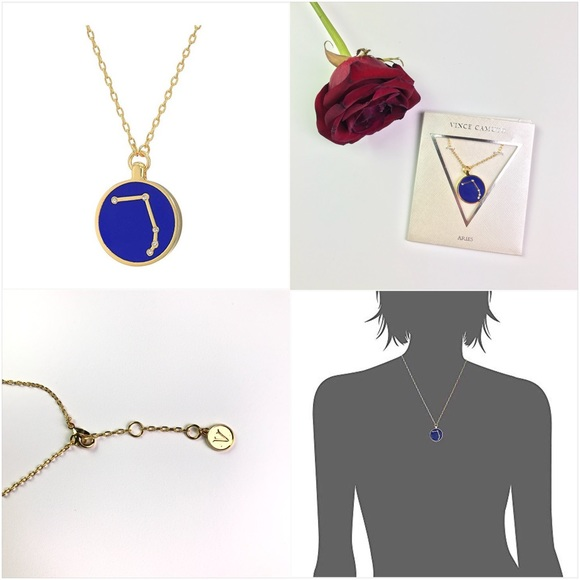 Vince Camuto Aries Pendant Necklace